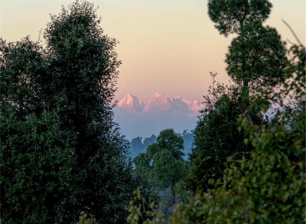 Peaks behind the Trees